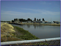 BEGINNING OF INTAKE CHANNEL NEAR FISH COLLECTION FACILITY